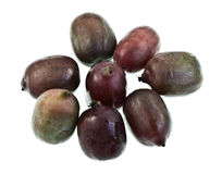 Hardy Kiwifruit Stock Images