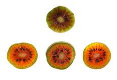 Hardy Kiwifruit. Slices of red Hardy Kiwi (Actinidia arguta), a perennial vine which produces a small fruit resembling the kiwifruit Stock Photos
