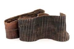 Hardy Rubber Tree Bark Royalty Free Stock Image