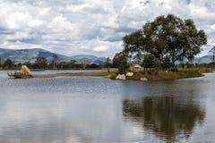Hareön på sjön royaltyfria foton