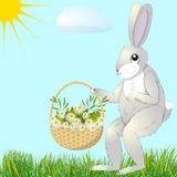 Hare with basket of flowers Royalty Free Stock Image