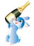 Hare with a bottle of champagne Stock Images
