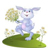 Hare with a bouquet of camomiles Royalty Free Stock Photo