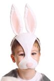 Hare boy Stock Photography