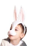 Hare boy Royalty Free Stock Photos