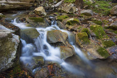Hare Canyon Creek, Limekiln State Park Stock Photo