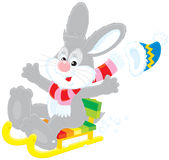 Hare driving in a sled. Vector clip-art of a smiling grey hare that drives in a sledge Stock Photo