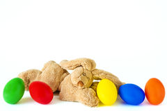 Hare with five coloured eggs Stock Images