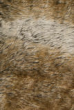 Hare Fur | Texture Royalty Free Stock Image