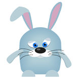 Hare. Grey Bunny with ears and blue eyes Stock Photos