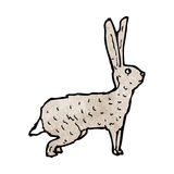Hare illustration Stock Photo