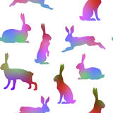 Hare multicolor pattern Stock Photography