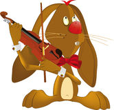 Hare the musician Stock Images