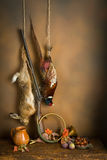 Hare and pheasant hanging. Autumn still life with hunting products, pheasant and hare Royalty Free Stock Image