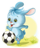 Hare playing football Stock Photos