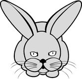 Hare or rabbit. Vector image of  hare or rabbit on white background Stock Photography
