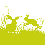Hare and rabbit on the lawn Stock Images