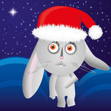 Hare in santa gat. For the Chinese Zodiac card - Rabbit Design, Rabbit look at Christmas star, additional stock illustration