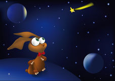 Hare space and a falling star Royalty Free Stock Images