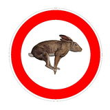 Hare speed limit Stock Photography