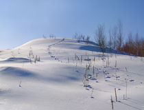 The hare trace on a snow-covered hill Royalty Free Stock Photos