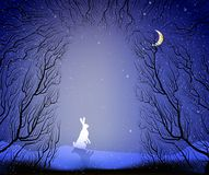 Hare in the way to the deep fairy frosty winter forest, winter hare in the forest,. Vector Royalty Free Stock Photos