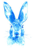 Hare. Wild animal image. Watercolor hand drawn illustration Royalty Free Stock Photography