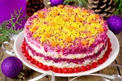 Harengs russes traditionnels de salade d'apéritif de Noël sous un fu Photo stock