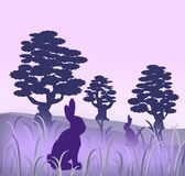 Hares. Two rabbits or hares in a misty landscape Royalty Free Stock Photo