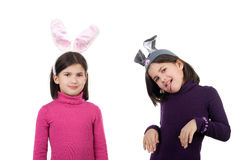 Hares Stock Photo