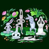Hares are doing yoga exercises Stock Images