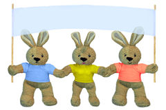 HARES holding Stock Image