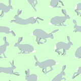 Hares pattern Stock Images