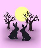 Hares at Sunset. Two hares  sitting together in the sunset Stock Photography