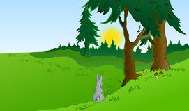 Hares in the wonderland. Vector Stock Images