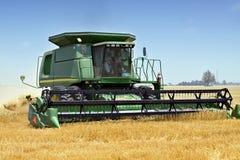 haresting的麦子 免版税库存照片