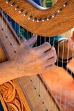 Harfa gracz Zdjęcie Royalty Free