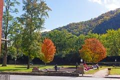 Harfiarzi Przewożą Historycznego parka i miasteczko zdjęcie royalty free