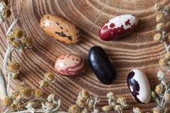 Haricot цвета на деревянном столе Стоковая Фотография RF