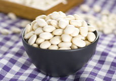 Haricot bean Stock Photos