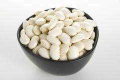 Haricot bean. Full white fresh haricot bean Stock Photography