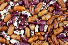 Haricot bean close background with high resolution. Colored haricot beans closeup on a background, top view, beans background Stock Photos