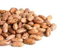 Haricot beans Stock Photo