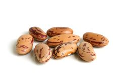 Free Haricot Beans Stock Photography - 13036942