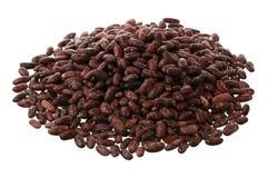 Haricot beans Royalty Free Stock Photos