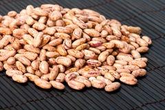 Haricot beans Royalty Free Stock Photo