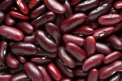 Free Haricot Beans Royalty Free Stock Images - 31061829