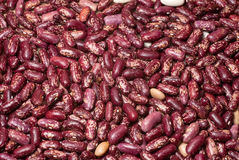 Haricot beans as a background Royalty Free Stock Photo