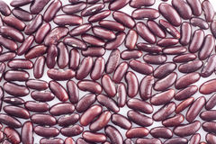 Haricot beans Royalty Free Stock Images