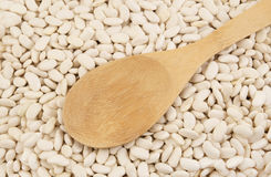 Haricot beans with wooden spoon Royalty Free Stock Images